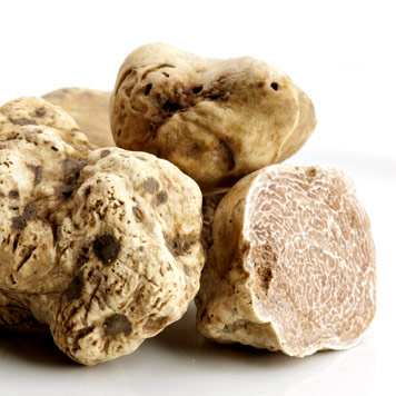 Truffles Selection